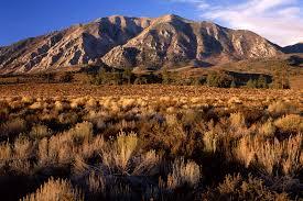 mountains-of-california